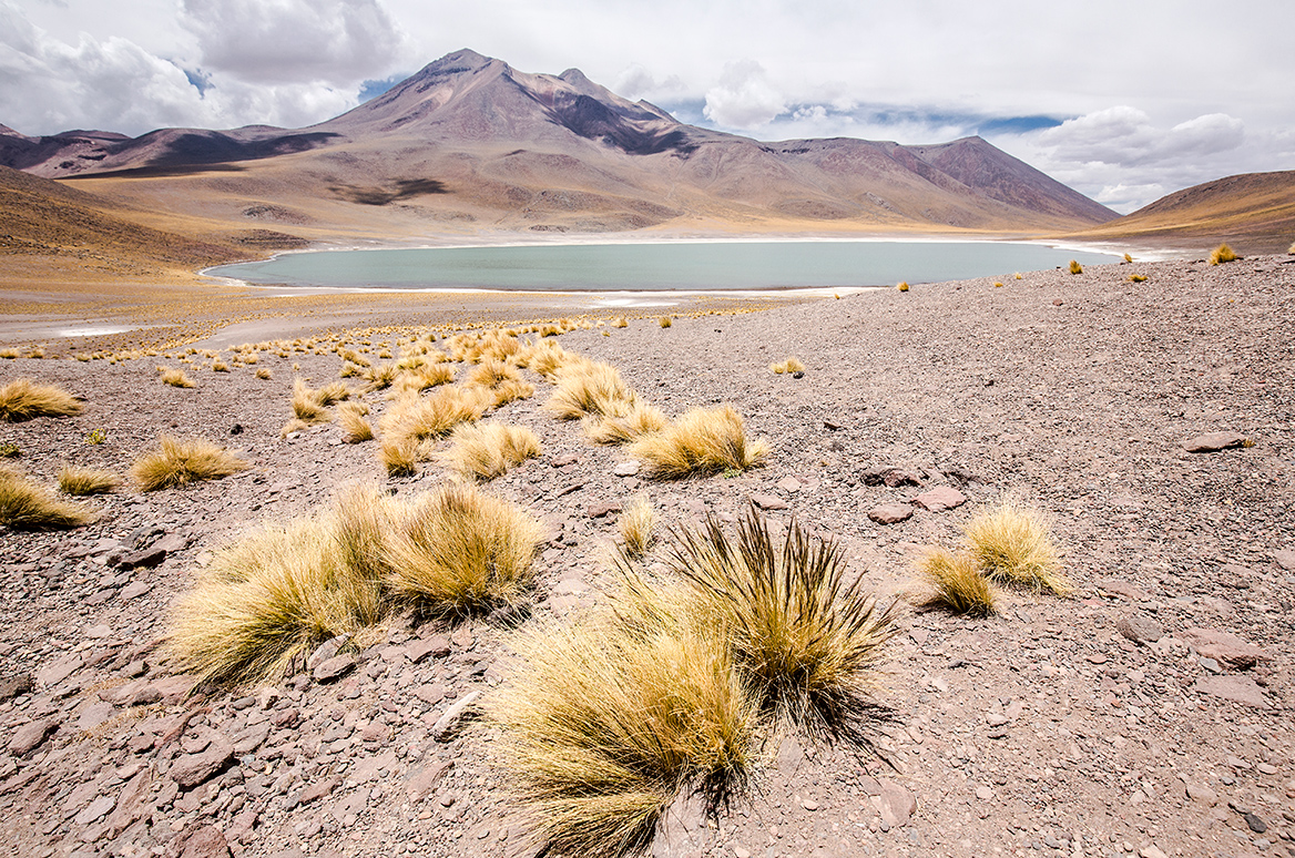 Atacama009